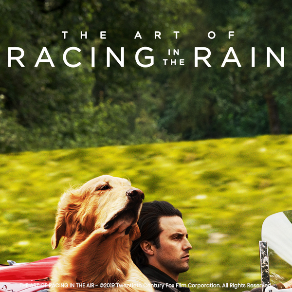 art-of-racing
